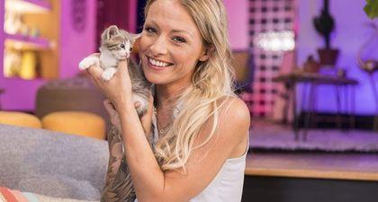 REPLAY - Chat alors ! : Roxanne célèbre la journée internationale du chat sur 6Ter